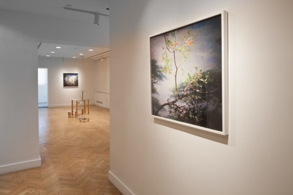 """http://virginiainesvergara.com/glass-scapes/"""