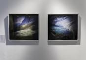 "Thumbnail image of ""En Foco at Longwood Gallery"""